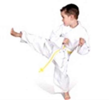 Semi-Absentee Martial Arts Business